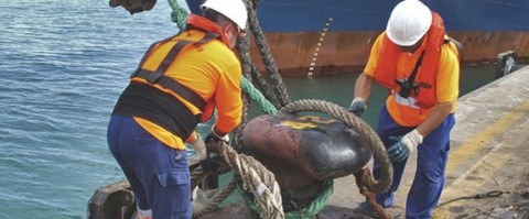 Labores de amarre de un buque