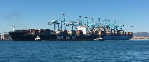 MSC y Maersk en APM Terminals de Algeciras