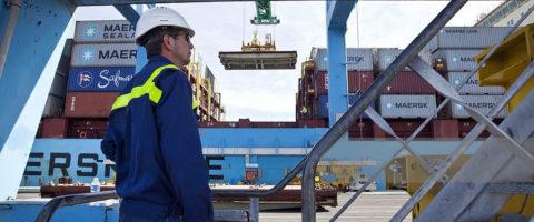 estibador Maersk