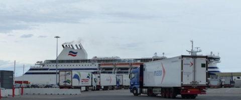 Los incidentes con los inmigrantes ilegales en el puerto de Bilbao han obligado a la construcción de un muro.