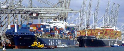 Para cubrir esta nueva conexión, disponible desde mediados de septiembre de 2019, las dos navieras contarán con un total de 14 buques de unos 9.500 TEUs.